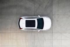 AWF-Ceramic-IR-Cadillac